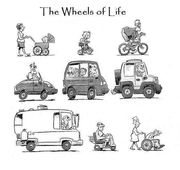 vehiculesdelavie.jpg